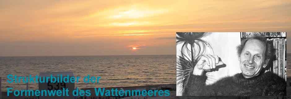 Strukturbilder der Formenwelt des Wattenmeeres